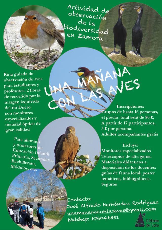 CRA_POSTER_UNA_MAÑANA_CON_LAS_AVES. jpg